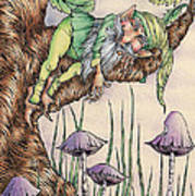 Sleeping Gnome Poster