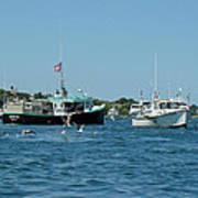 Sleepy Boats At Chatham - Cape Cod  Ma Poster