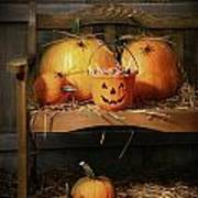 Small And Big Pumpkins On An Old Bench  Poster