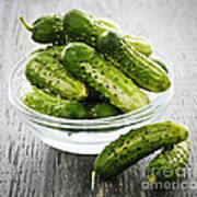 Small Cucumbers In Bowl Poster by Elena Elisseeva