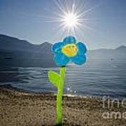 Smile Flower On The Beach Poster