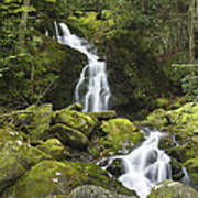 Smoky Mountain Waterfall - Mouse Creek Falls Poster