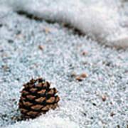 Snow Cone Poster