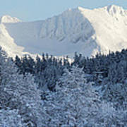 Snow Covered Mount Currie From Whistler Poster