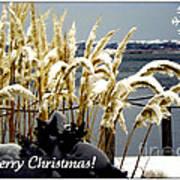 Snow Dust Christmas Card Poster