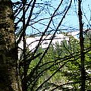 Snow In April Poster