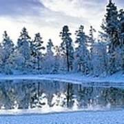 Snowy Lake Poster by David Nunuk