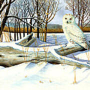 Snowy Owl and Mouse Poster