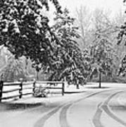 Snowy Tracks Poster