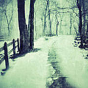 Snowy Wooded Path Poster