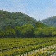 Solis Winery Poster