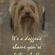 Sorry You're Sick Greeting Card - Cute Doggie Poster