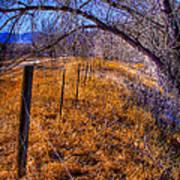 South Platte Fenceline Poster