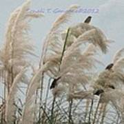 Sparrows In Breeze Poster