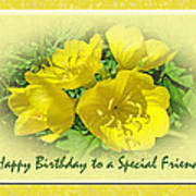 Special Friend Birthday Greeting Card - Yellow Primrose Poster