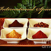 Spices From Around The World Poster