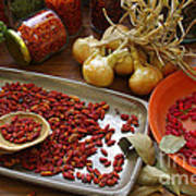 Spicy Still Life Poster