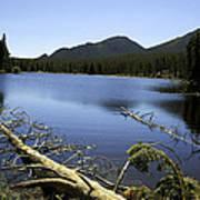 Sprague Lake Rocky Mountain National Park Poster