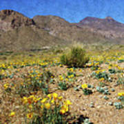 Spring Bloom Franklin Mountains Poster