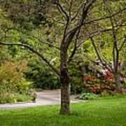 Spring Garden Landscape Poster