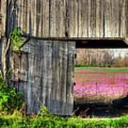 Spring In Kentucky Poster