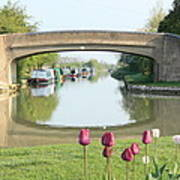 Spring On The Oxford Canal Poster