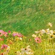 Spring Rain Poster