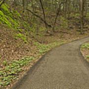 Spring Trail Scene 4 Poster