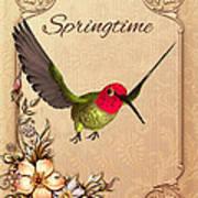 Springtime - Hummingbird Poster