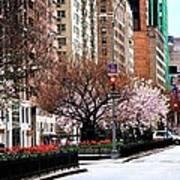 Springtime On Park Avenue Poster