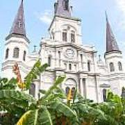 St Louis Cathedral Rising Above Palms Jackson Square New Orleans Film Grain Digital Art Poster