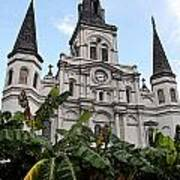St Louis Cathedral Rising Above Palms Jackson Square New Orleans Fresco Digital Art Poster
