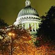 St Pauls Cathedral At Night With Trees Poster