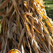 Stacked Stalks And Placed Pumpkin Poster