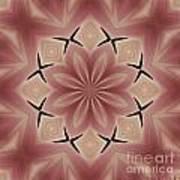 Star Magnolia Medallion 4 Poster