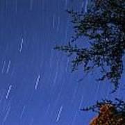 Stars Falling Poster