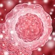 Stem Cell, Conceptual Artwork Poster