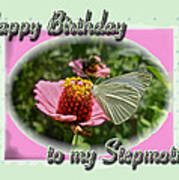 Stepmother Birthday Greeting Card - Butterfly On Flower Poster