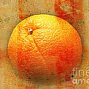Still Life Orange Abstract Poster