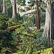 Stoltman Old Growth Forest Landscape Painting Poster