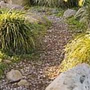 Stone Path Through Garden Poster by James Forte