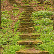 Stone Step Trail 1 Poster