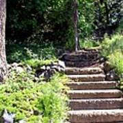 Stone Steps Poster by Myrna Migala
