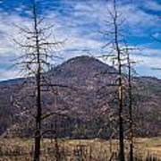 Studies On Sugarloaf Peak 2 Poster