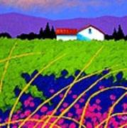 Study For Provence Painting Poster