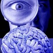 Studying The Brain, Conceptual Image Poster