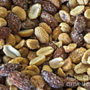 Sugar Coated Mixed Nuts Poster