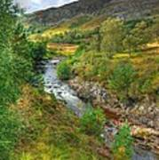 Summer Colour In The Glen Poster by John Kelly