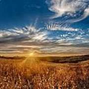 Sun Enchanted Evening I Poster