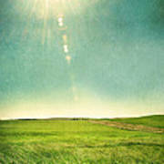 Sun Over Field Poster